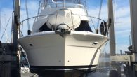 marine inspection services